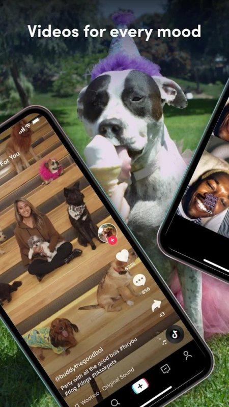 Đăng video thường xuyên hơn để tăng khả năng hiển thị - Tối ưu Tiktok cho doanh nghiệp