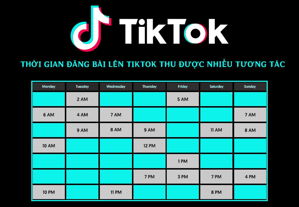 Thời gian đăng bài phù hợp để Marketing trên TikTok